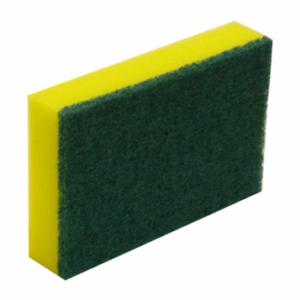 Commercial Green and Gold Sponge Scourer